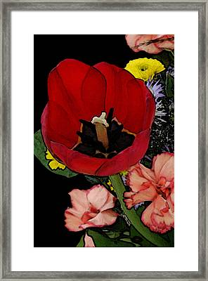 Tulip Number One Framed Print