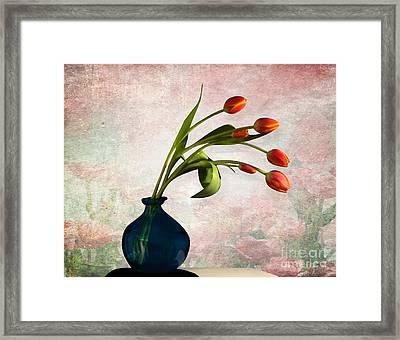 Tulips 6 Framed Print by Mark Ashkenazi