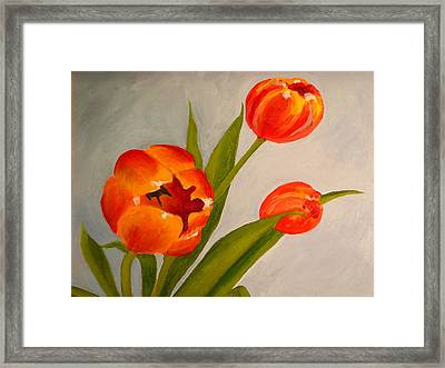 Tulips Framed Print by Valerie Lynch