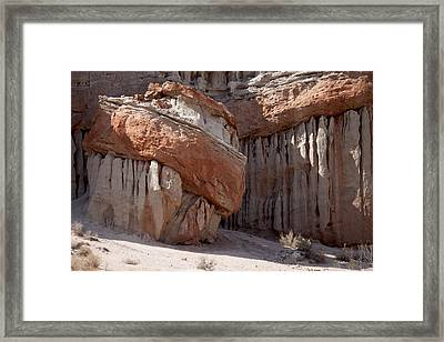 Turk's Turban Framed Print by Ivete Basso Photography