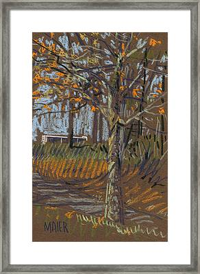 Turning Leaves Framed Print by Donald Maier