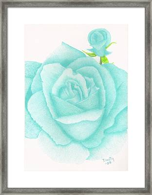 Turquoise Jewel Framed Print by Dusty Reed