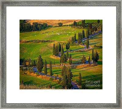 Tuscan Road Framed Print by Inge Johnsson