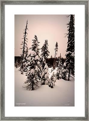 Twilightwinter Framed Print