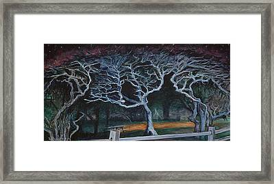 Twisted Night Framed Print by Ron Richard Baviello