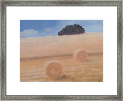 Two Hay Bales, 2012 Acrylic On Canvas Framed Print