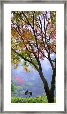 Two Heron  Framed Print by Lori Grimmett
