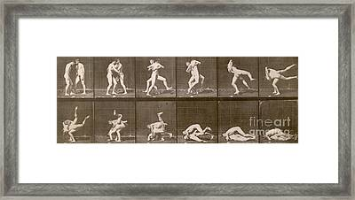 Two Men Wrestling Framed Print by Eadweard Muybridge