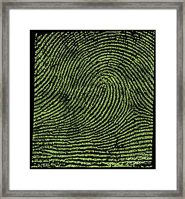 Typical Loop Pattern, 1900 Framed Print by Science Source