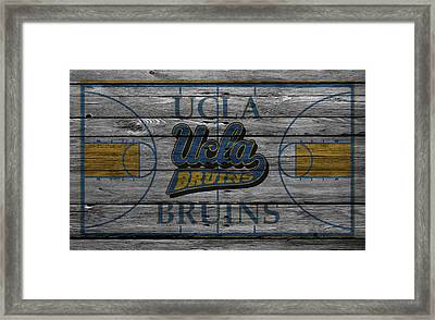 Ucla Bruins Framed Print by Joe Hamilton