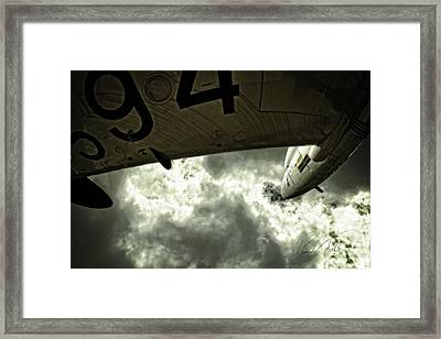 Under My Wing Framed Print by Paul Job