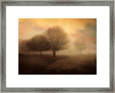 Undiscovered Framed Print by Jessica Jenney
