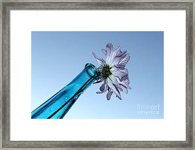 Until Tomorrow Framed Print