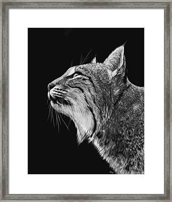 Watching The Birds Framed Print by Heather Ward