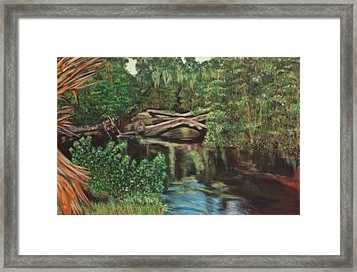 Untitled Framed Print by Mark Baird