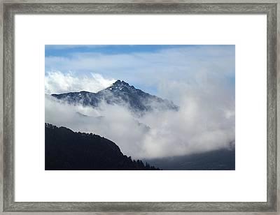 Up High Framed Print
