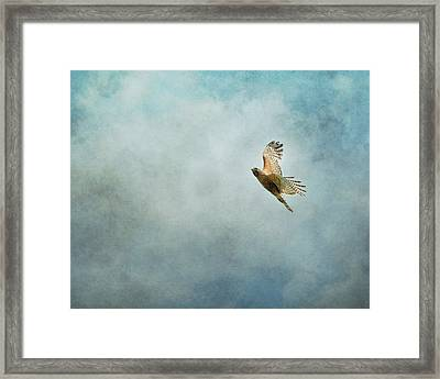 Up Up And Away Framed Print by Jai Johnson