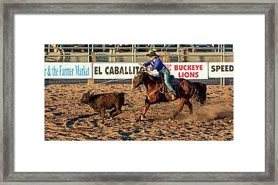 Usa, Arizona, Buckeye, Hellzapoppin Framed Print by Jaynes Gallery