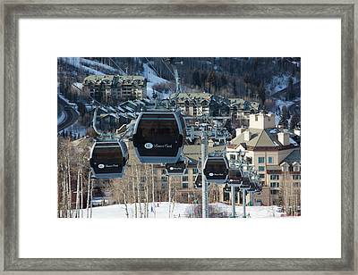 Usa, Colorado, Beaver Creek, Beaver Framed Print by Walter Bibikow