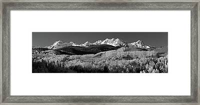 Usa, Colorado, Rocky Mountains, Aspens Framed Print by Panoramic Images