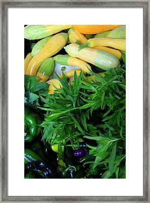 Usa, Georgia, Savannah, Organic Squash Framed Print by Joanne Wells