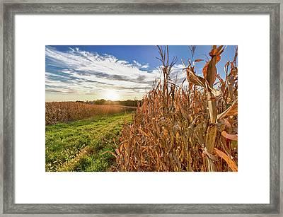 Usa, Nebraska, Near Omaha Framed Print by Christopher Reed