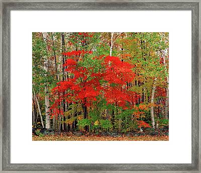 Usa, New Hampshire, White Mountains Framed Print