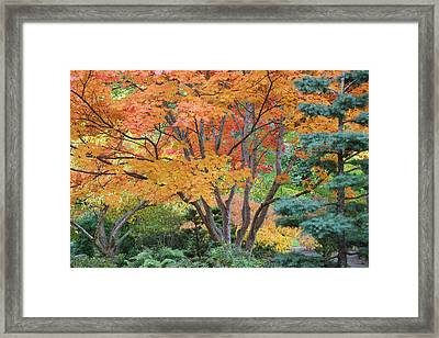 Usa, Oregon, Ashland Framed Print by Jaynes Gallery