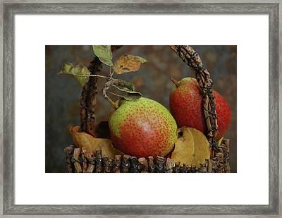 Usa, Oregon, Hood River Framed Print by Jaynes Gallery