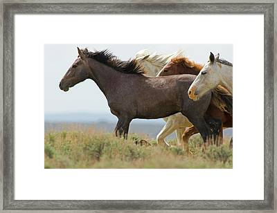 Usa, Wyoming, Carbon County Framed Print
