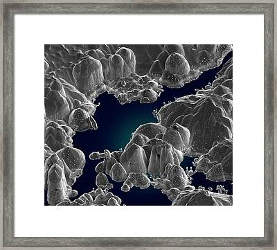 Used Sputter Coating Target Framed Print by Science Photo Library