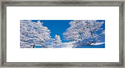 Utsukushigahara Nagano Japan Framed Print by Panoramic Images