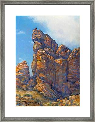 Valley Of Fire Framed Print by Tanja Ware