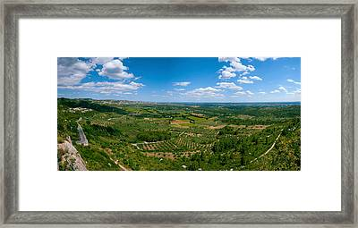 Valley With Olive Trees And Limestone Framed Print by Panoramic Images