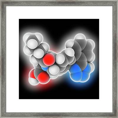 Valsartan Drug Molecule Framed Print by Laguna Design