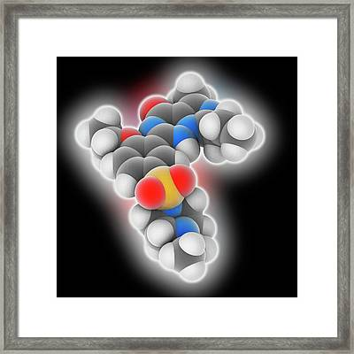 Vardenafil Drug Molecule Framed Print