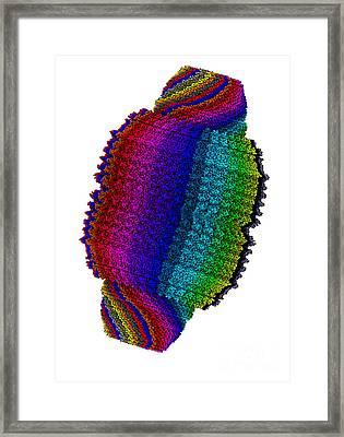Vault Cytoplasmic Ribonucleoprotein Framed Print by Scott Camazine