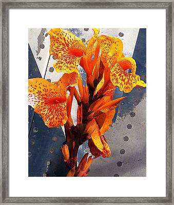 Ventura Flower Framed Print by Ron Regalado