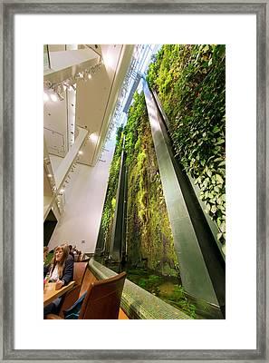 Vertical Garden Framed Print by Louise Murray