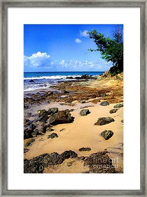Vieques Beach Framed Print by Thomas R Fletcher