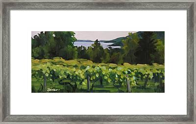 Vineyard Morning Framed Print