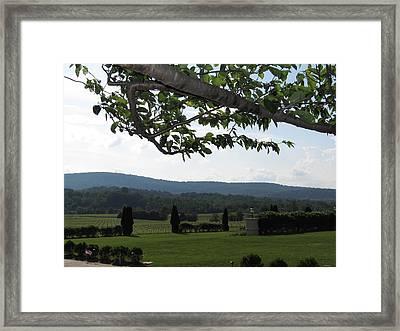 Vineyards In Va - 12125 Framed Print
