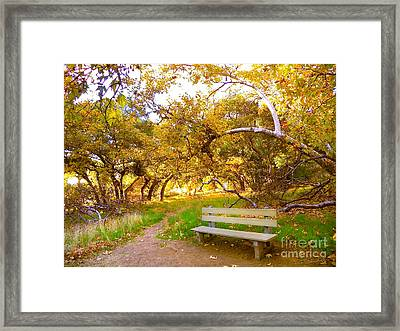 Visionary's Path Framed Print by Gem S Visionary
