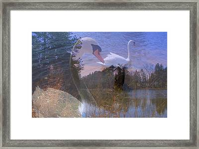Visions Of Summer Framed Print by Rick Todaro