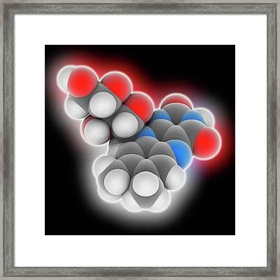 Vitamin B2 Riboflavin Molecule Framed Print