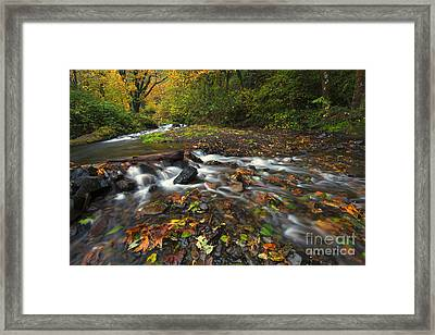 Wahkeena Autumn Framed Print by Mike Dawson