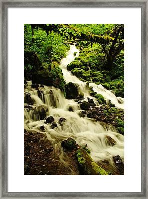 Wahkeena Creek Framed Print by Jeff Swan