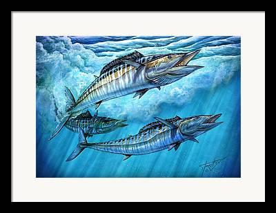 Mackerel Framed Prints