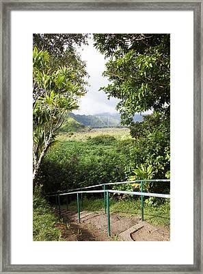 Wailua Valley State Wayside Framed Print by Jenna Szerlag