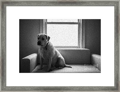Waiting Framed Print by Diane Diederich